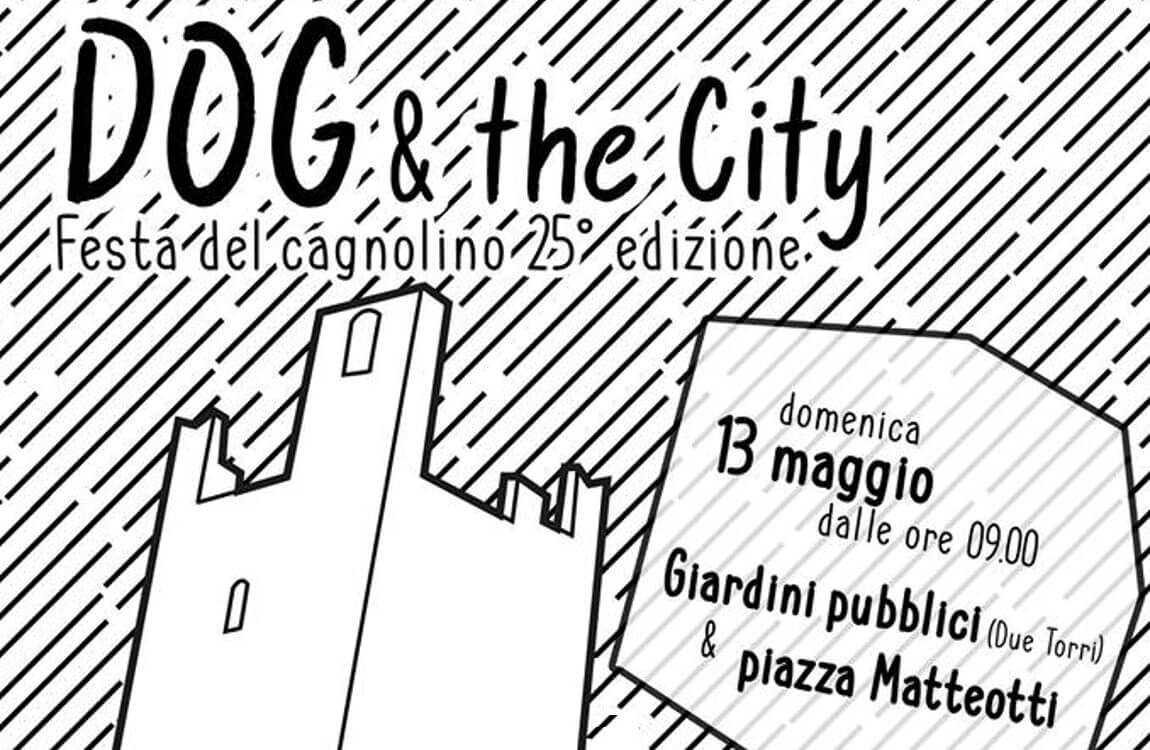 Dog & the city